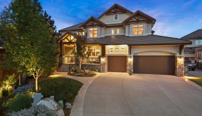 1260 Buffalo Ridge Road, Castle Pines, CO 80108 3D Model